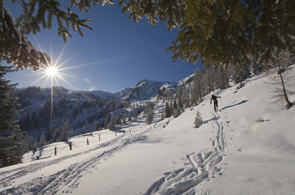 Eine Skitour Saukaralmen